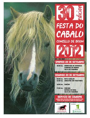 XXX Fiesta del Caballo, Brión