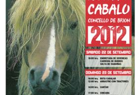 cabalo1