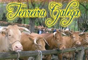 Festa-Da-Terneira-en-Lancara1